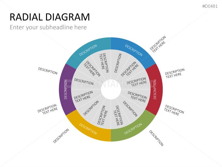 radial diagram related keywords