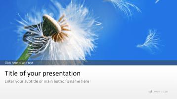 Pusteblume - Löwenzahn _https://www.presentationload.de/pusteblume.html