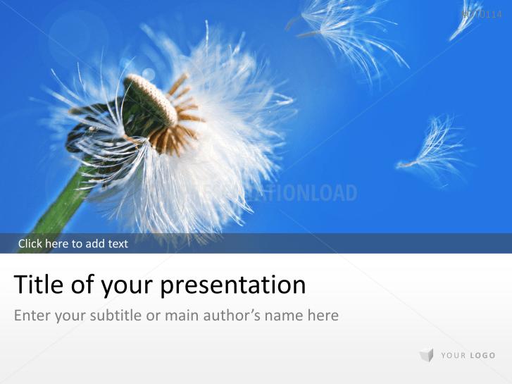 Dandelion _https://www.presentationload.com/dandelion.html