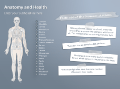 Free Anatomy PowerPoint Templates _http://www.presentationload.com/free-anatomy-powerpoint-templates.html