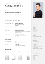 job application powerpoint template for painters
